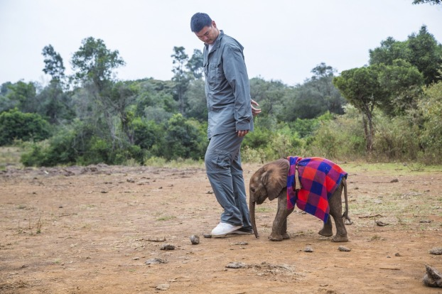 NBA star Yao Ming and an elephant calf.