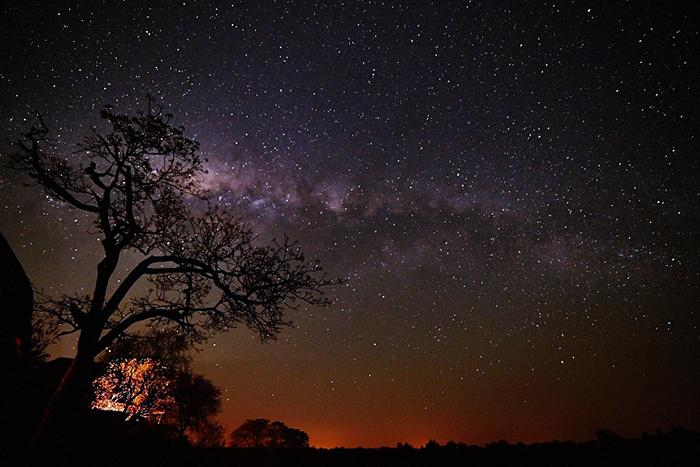 starry sky at londolozi