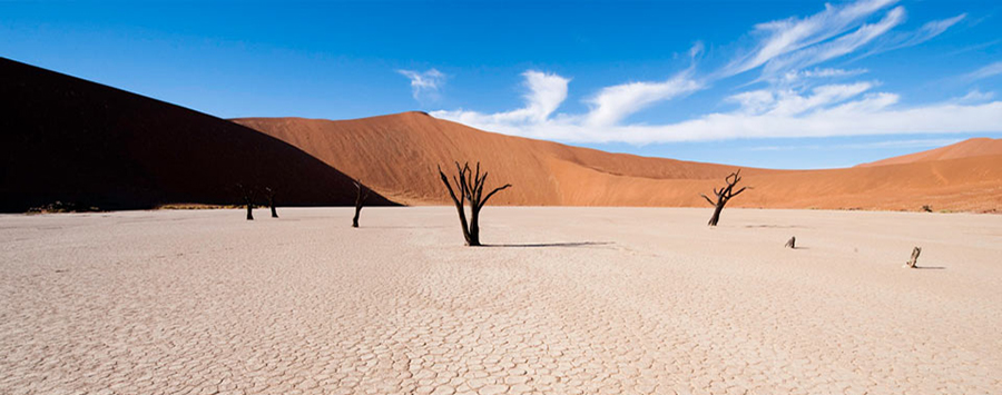 Top 5 Ways to Experience Namibia