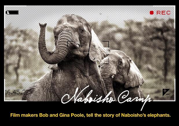 Naboisho Camp Kenya