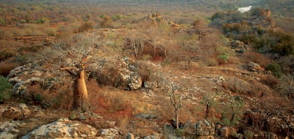 Malilangwe Wildlife Reserve Zimbabwe
