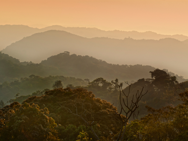 Rwanda Eco Tourism